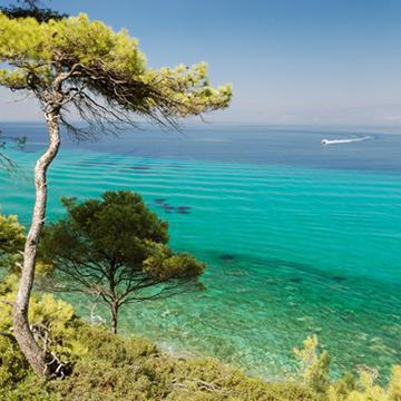7 days cruise to Chalkidiki -Ammon Zeus